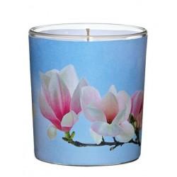 """Świeca Zapachowa w Szkle Sleeve """"Magnolia"""" (1 szt.)"""