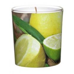 Świeca zapachowa w szkle Sleeve Citronella (1 szt.)
