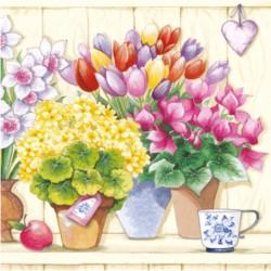 Serwetki Kwiaty w Doniczkach 33x33 cm 20szt