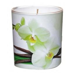 Świeca Zapachowa w Szkle | Sleeve | Wanilia | 24 H