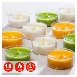 Podgrzewacze transparentne zapachowe | Citronella | 18 szt. | 4 H