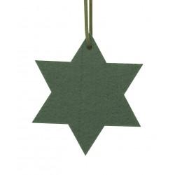 Gwiazda filcowa